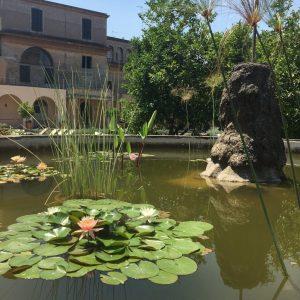 borgo ripa - IMG 4644 300x300 - Borgo Ripa, un magnifico giardino nel cuore di Trastevere