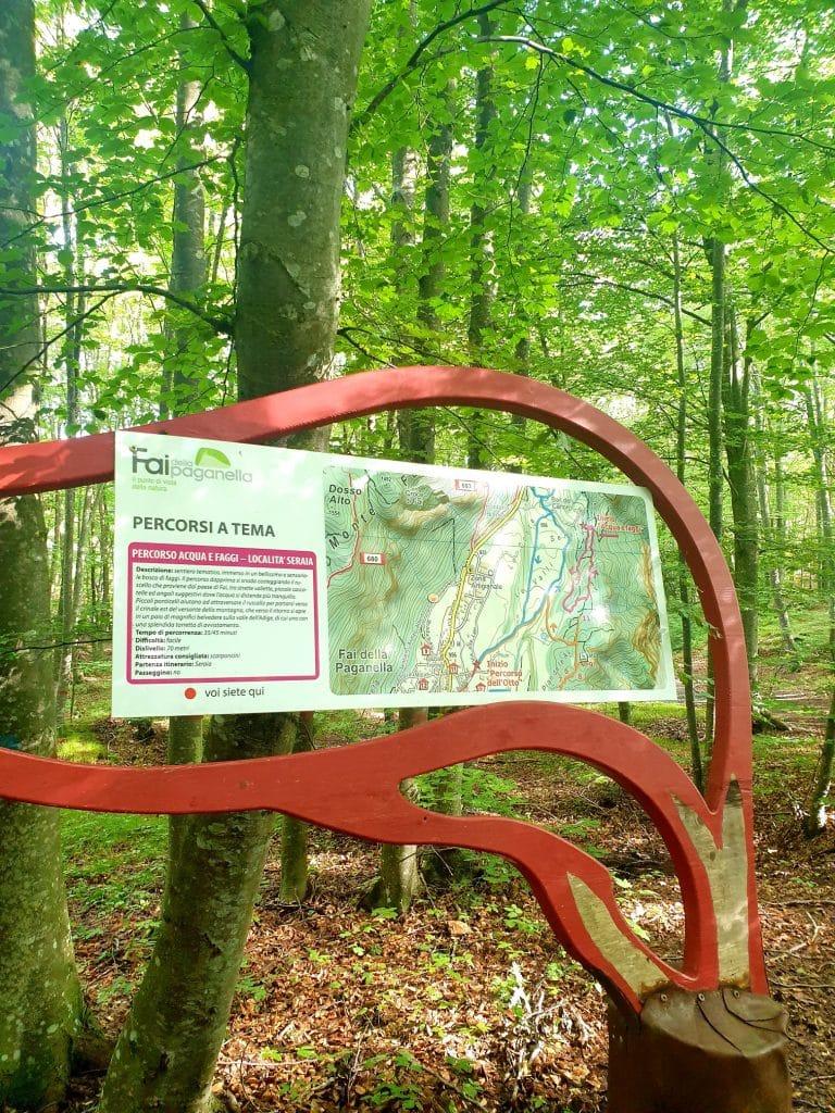 Trentino - Parco del Respiro trentino - 20200922 160023 768x1024 - Trentino: benessere con il forest bathing a Fai della Paganella