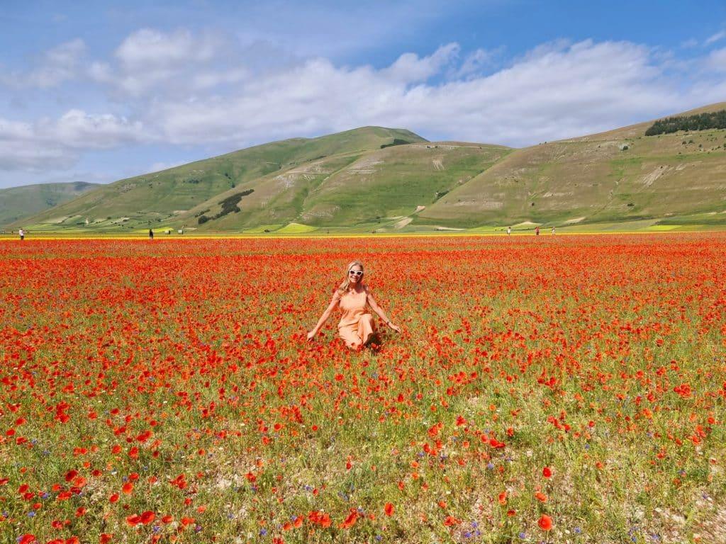 Castelluccio di Norcia - Piana in fiore